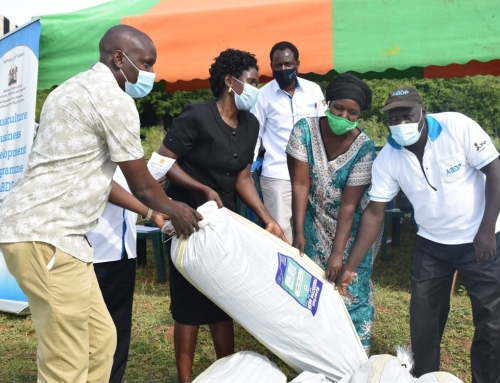 Fish Farmers Receive Inputs as Siaya Marks First Aquaculture Day